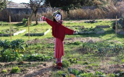 Saint-Geniès de Malgoirès | 3 idées semées par François autour du jardinage