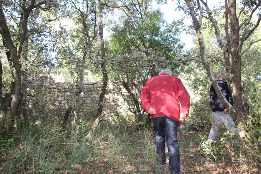Personnes dans un bois