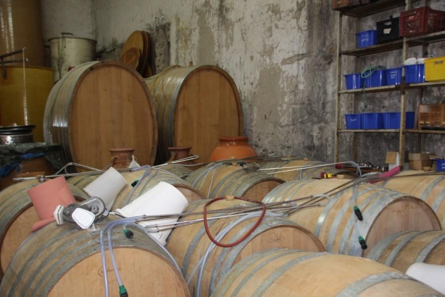 Cave à vinification