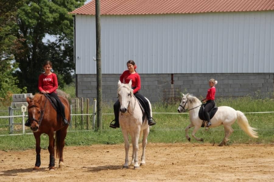 Démonstration dans un manège d'équitation
