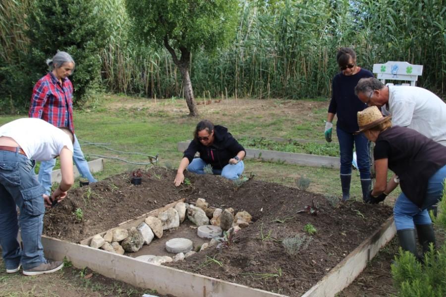 Gens plantant dans un jardin