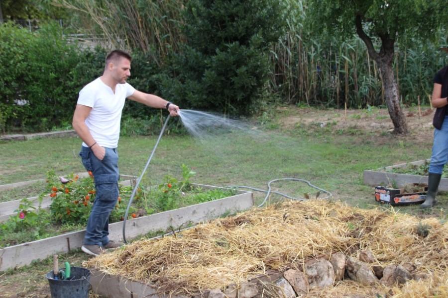 Homme arrosant un jardin