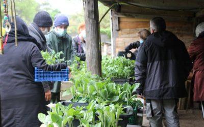 SAINT-GENIès de Malgoires | Marché aux plants à l'Ortalet